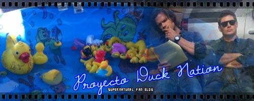 """Duck Nation"" Duck10"