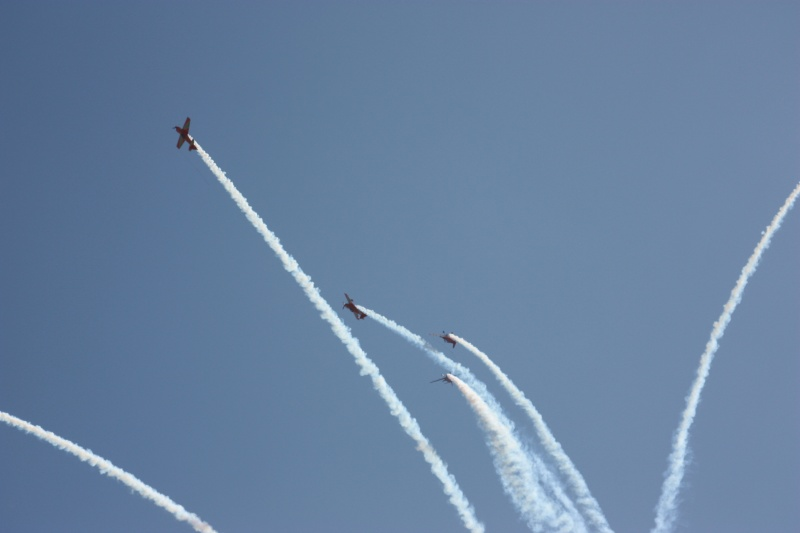 la patrouille acrobatique : la marche verte - Page 8 Img_5810