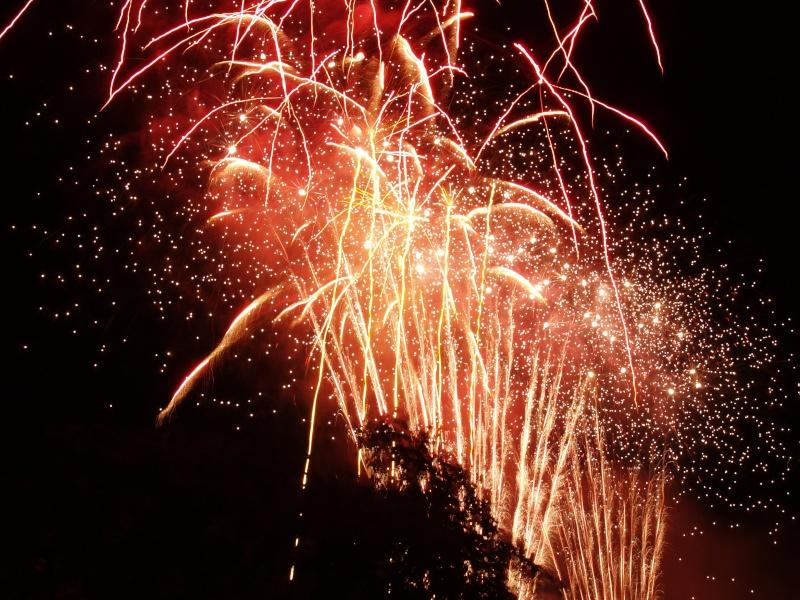 Vos feux d'artifices du 13 ou 14 Juillet P1010310