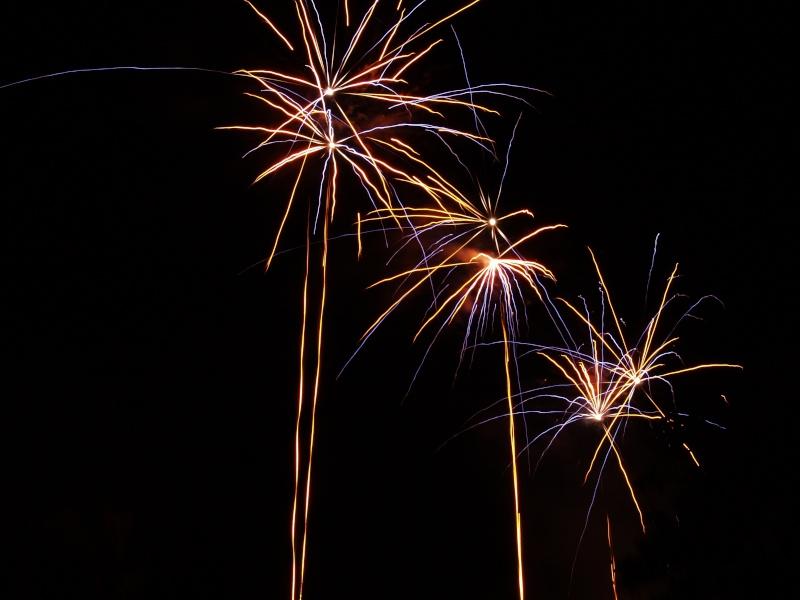 Vos feux d'artifices du 13 ou 14 Juillet P1010312