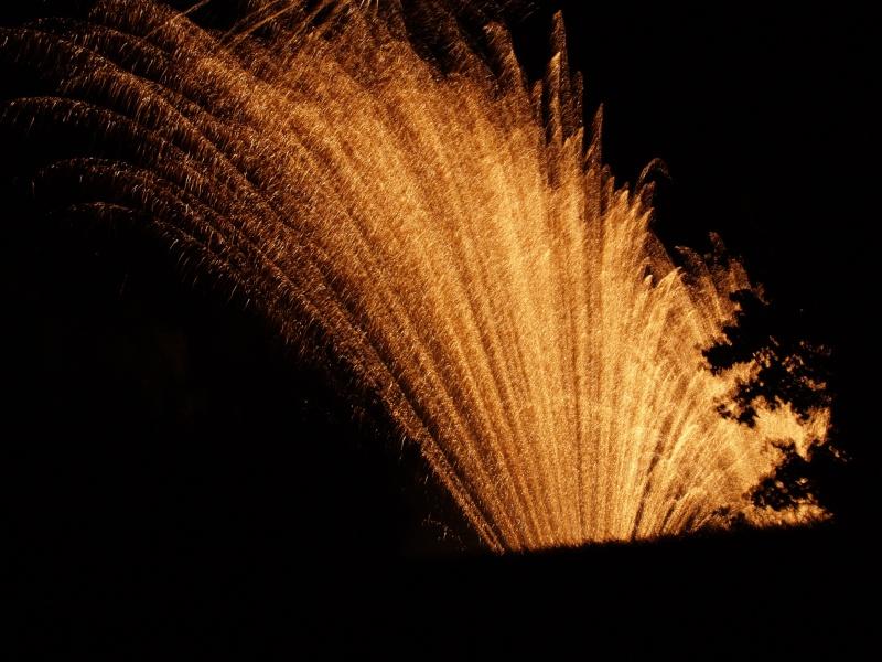 Vos feux d'artifices du 13 ou 14 Juillet P1010313