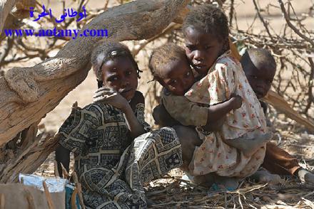 حملة أوطانى الحرة لإنقاذ إخواننا فى الصومال 110