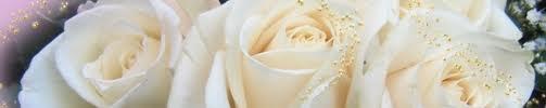 Meditons les sept vertus de Marie : septieme jour Bannie43