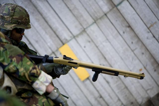 Les armes de l'armée Néerlandaise D0904210