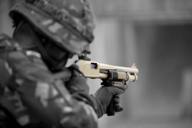 Les armes de l'armée Néerlandaise D0904211