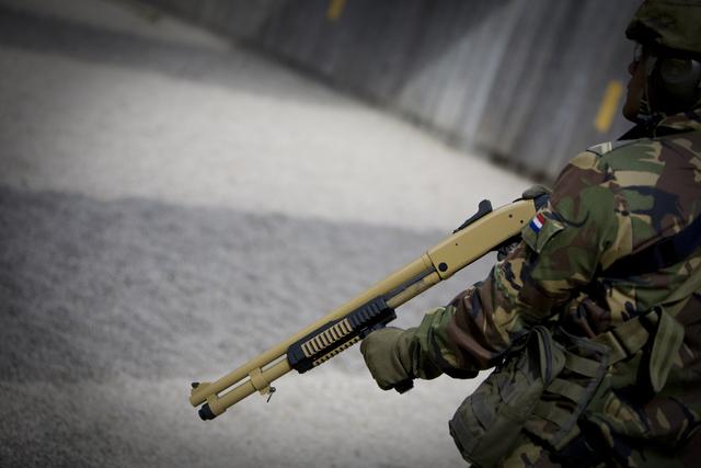 Les armes de l'armée Néerlandaise D0904212