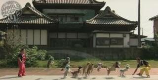 zoologie Uchida Geinousha chien corde à sauter 13 canidés talent forum animaux dans les cultures mammifères cirque japonais Super Wan Wan Guinness des Records septembre 2011 reccord 2012
