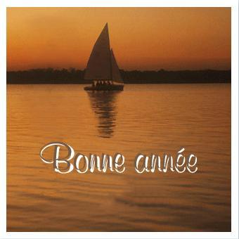 Bonne année 2012 !!! Bonne_11