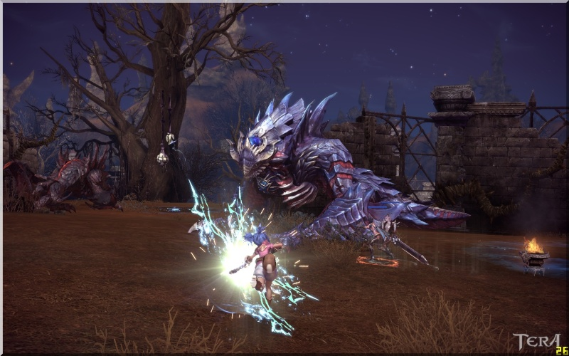 Tera Screenshots! - KTera + Beta - Page 4 Whites13