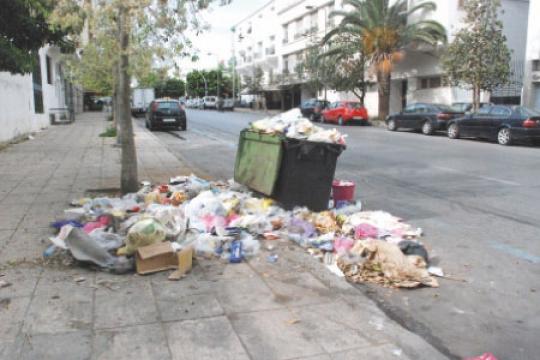 Ramassage des ordures Veolia Propreté hors jeu Imager31