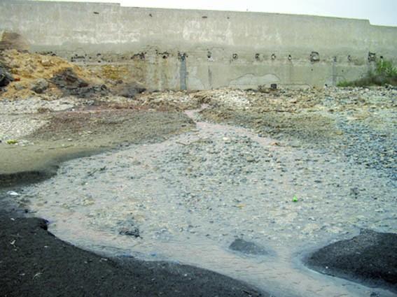 Ruade sur les plages d'Agadir : La pollution fait des ravages  Imgp4410