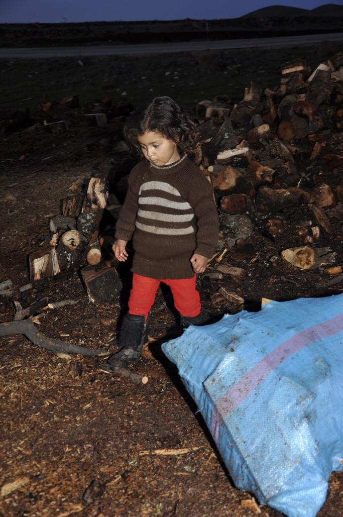 MoyenAtlas Bois de chauffage et préservation des ressources forestières : l'éternel dilemme …  Info_162