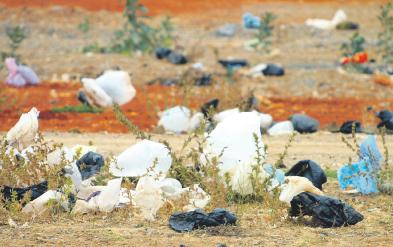 Sacs en plastique: La loi 22-10 entre en application  P10_2010