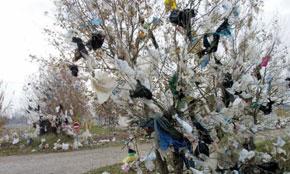 La loi sur les sacs plastiques imparable Public10