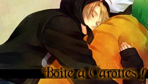Tout savoir sur les Carottes ! Boite_10