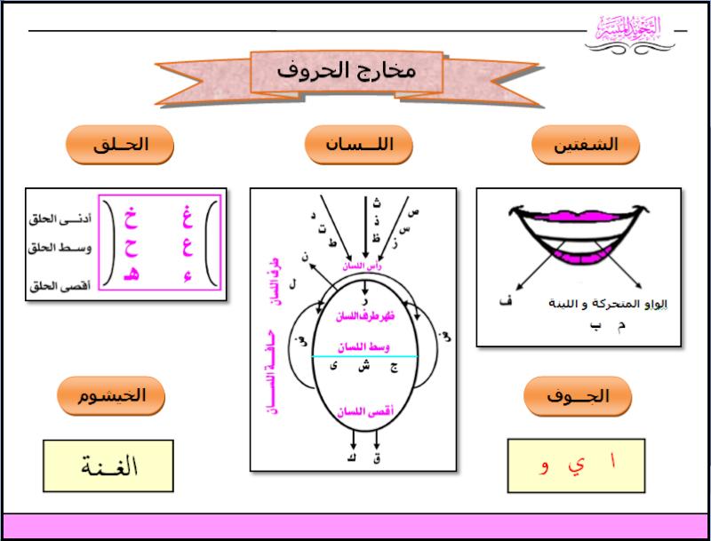 Les points d'articulations des lettres (makharij al-huruf) Tajwid11