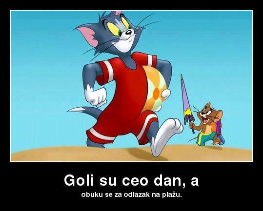 Tom and Jerry (1965–1972)  & Tom and Jerry Tales (2006– )  - Page 2 52772110