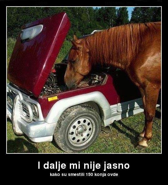Koliko konja ima tvoj auto? 53279910