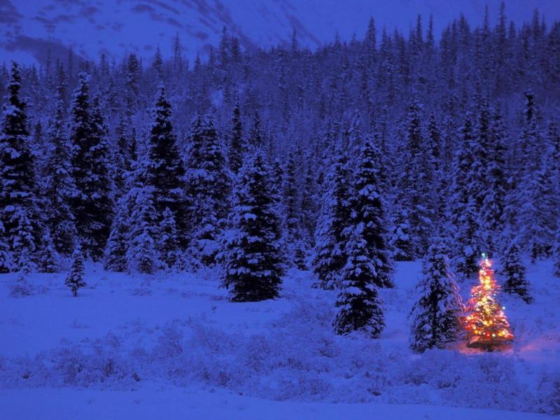Božićne slike - Page 2 Blue-f10