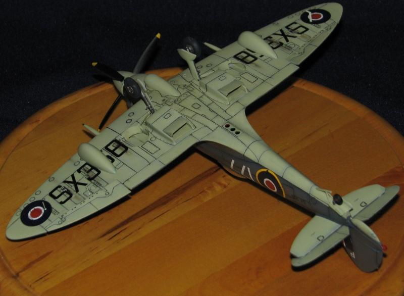 Supermarine Seafire F.XVII Img_0815