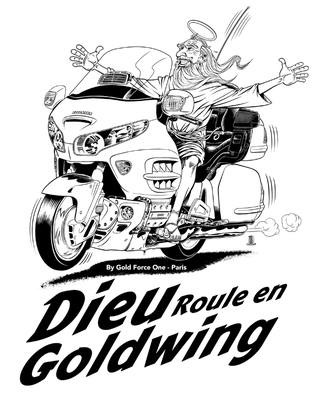 Goldwing  comique ou pas Img_2011