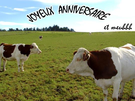 Joyeux anniversaire aujourd'hui à ... - Page 23 Vache110