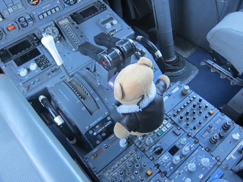 Les vols de la mascotte - Page 8 Img_1811