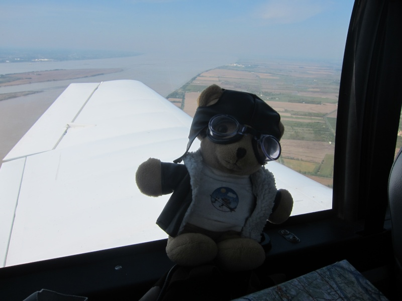 Les vols de la mascotte - Page 9 Img_1816
