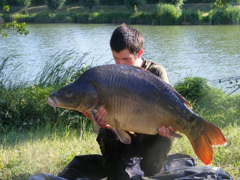 Quelle poisson vous a marquez le plus durant cette année 2011 ? Dscf4314