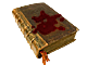 ► Le livre de sang