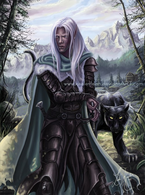 Ergonia: The Beginning Drizzt10