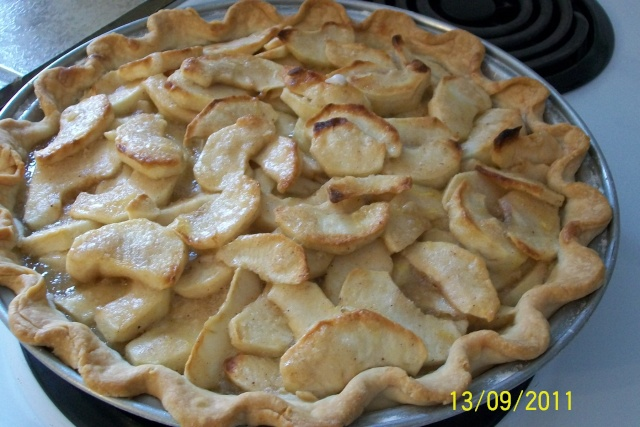 Tarte de fantaisie aux pommes Aout2025
