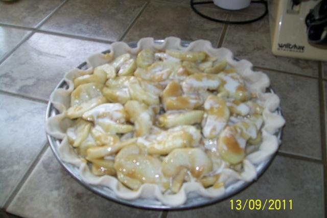 Tarte de fantaisie aux pommes Aout2026