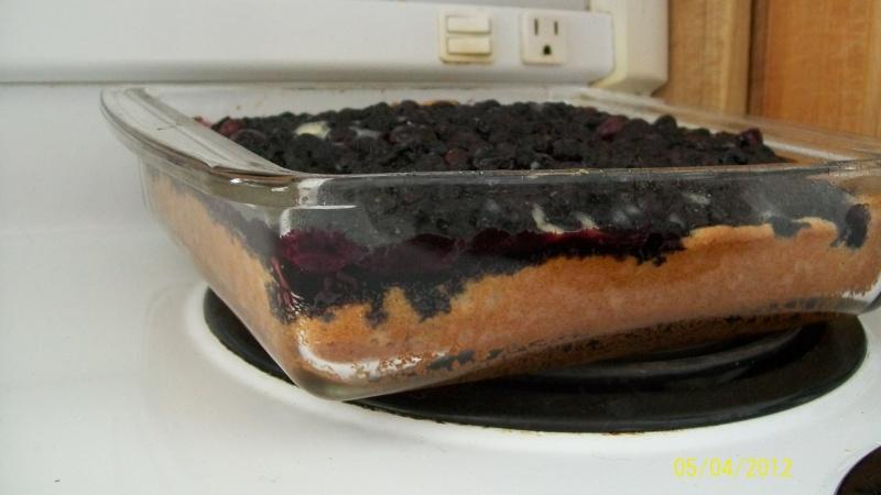 Gâteau pouding aux bleuets(photo) Gato_013