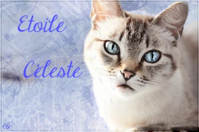 Ely || Prez  Etoile11