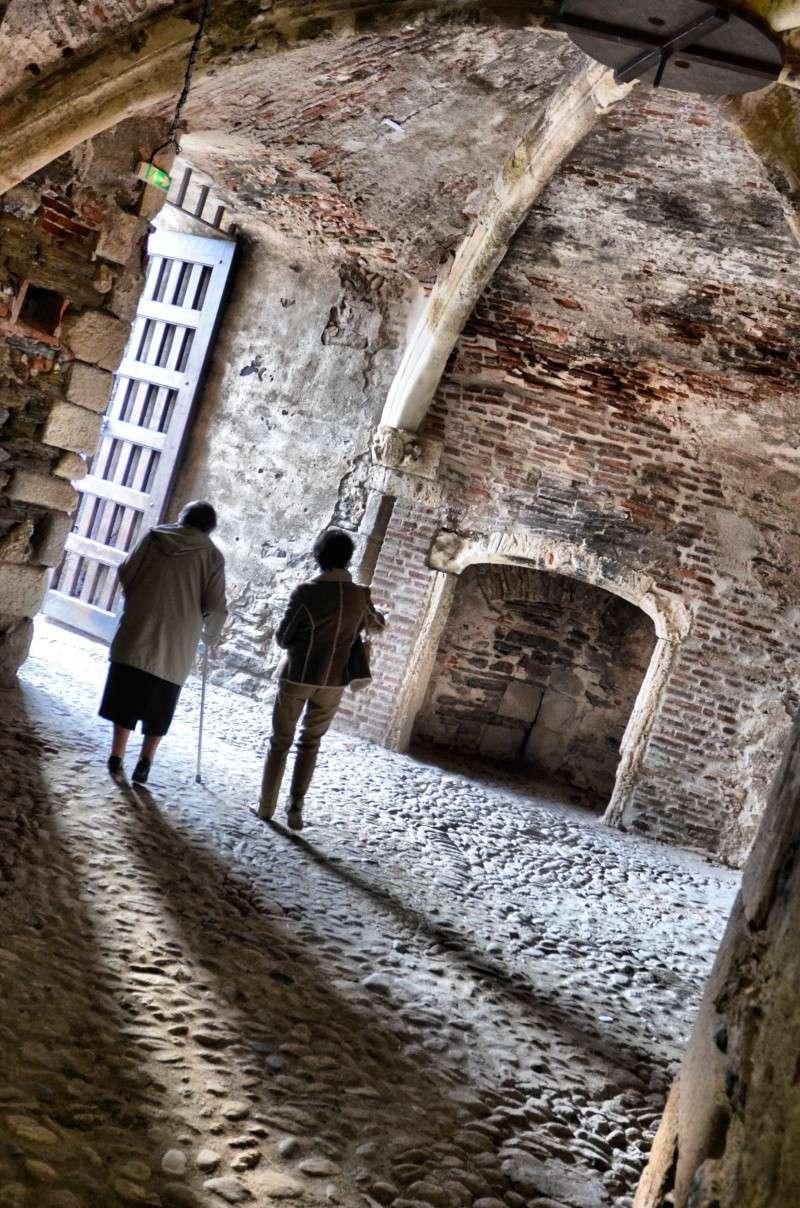 Collioure Dsc_0027