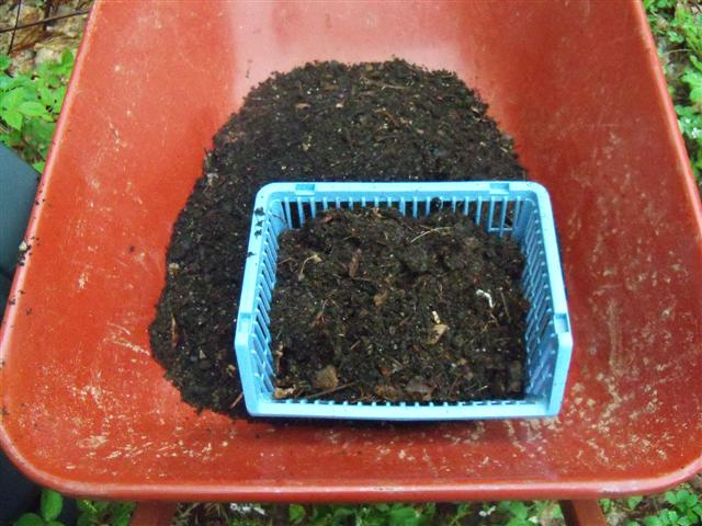 Compost combination, Good or Bad? 05-22-19