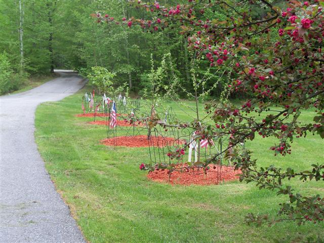 Thinking of adding fruit trees this year.... 05-22-26