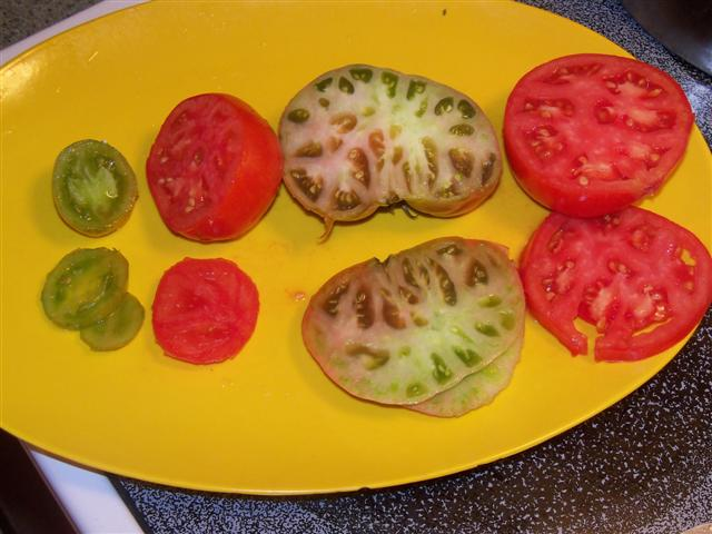 Favorite Tomato Varieties? 09-09-12