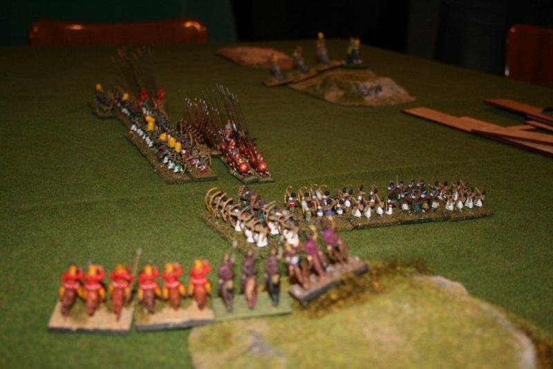 BACTRIAN versus INDIAN Img_4210