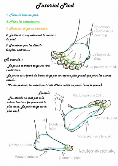 tuto mains et pieds → structure et tout. 30184812