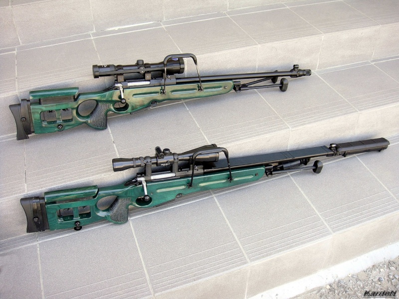 Russian Sniper Rifles and Units 0_525d10