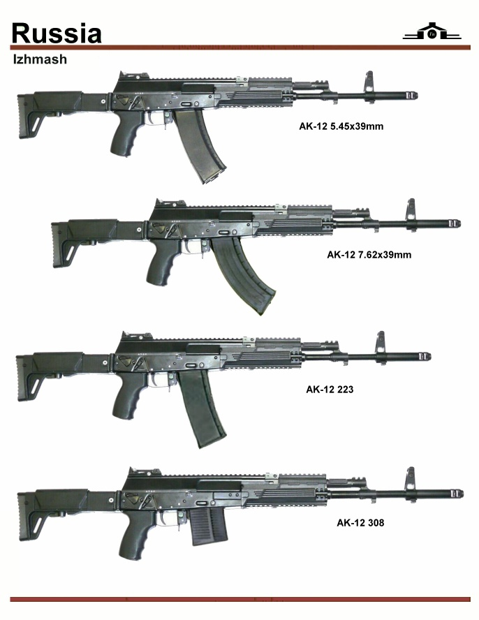 AK-12 Rifle Discussion Sai-6711