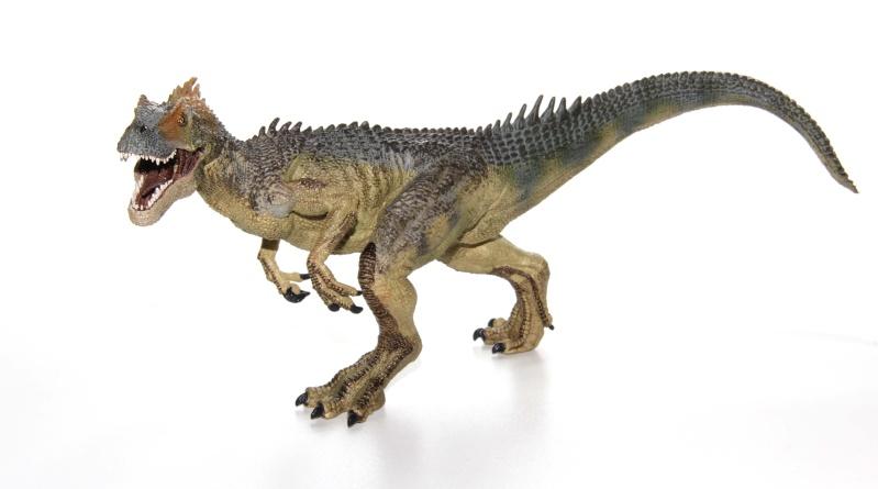 Allosaurus, Ankylosaurus & Spinosaurus Img_2030