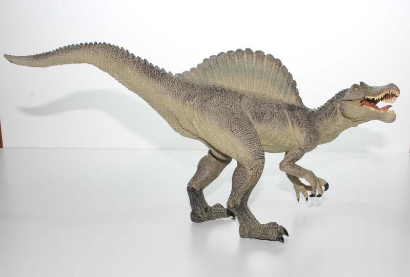 Allosaurus, Ankylosaurus & Spinosaurus Img_2032