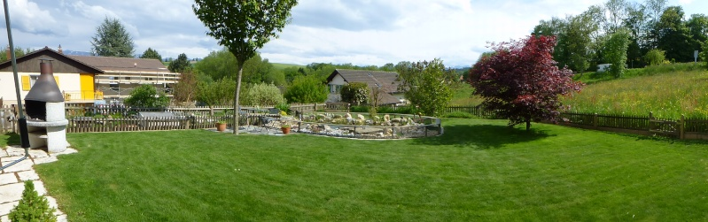 Projet de réalisation d'un bassin pour cistudes - Page 11 P1010013
