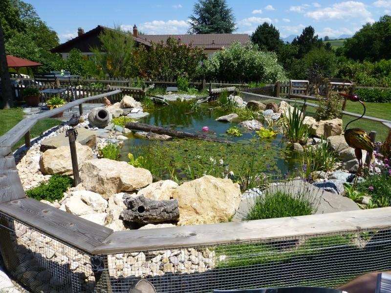 Projet de réalisation d'un bassin pour cistudes - Page 12 P1010023
