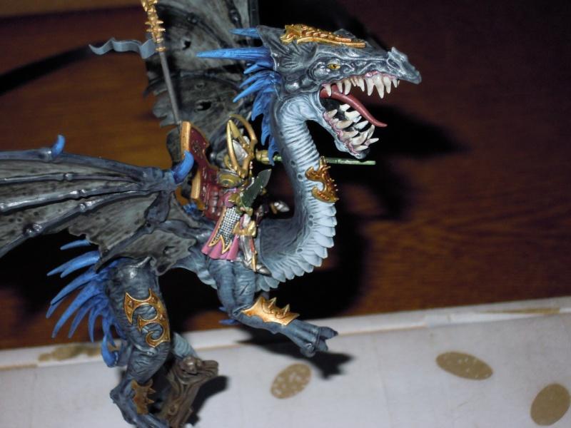 Dragon elfes noirs  Dscn1413