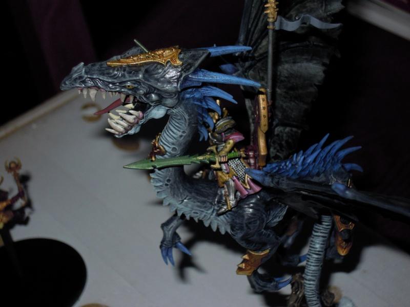 Dragon elfes noirs  Dscn1414