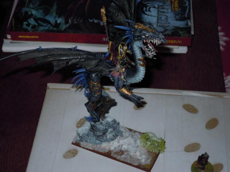 Dragon elfes noirs  Dscn1415